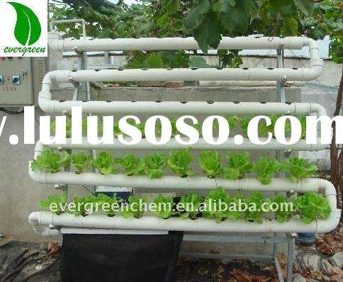 home Hydroponics grow system