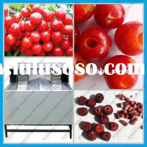 hot selling automatic cherry pitter
