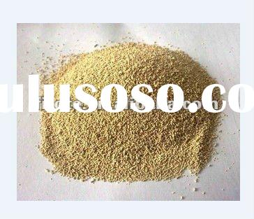 Yeast Powder For Bakery