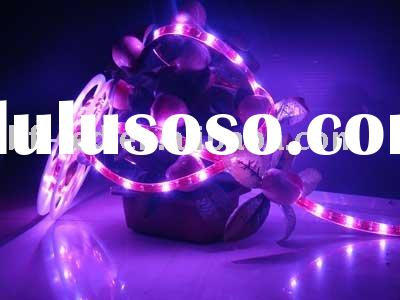 Asia LED SMD flexible strip