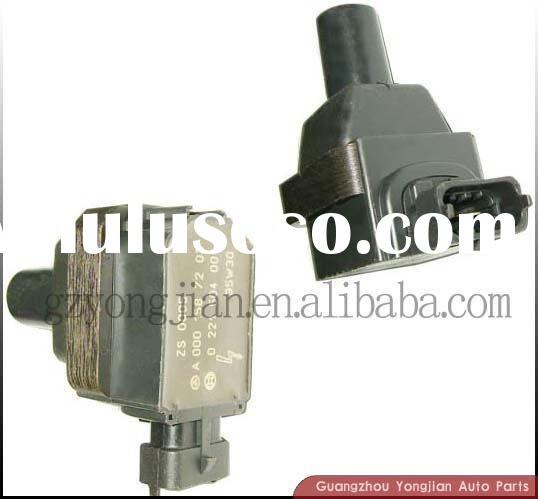 Ignition Coil (0221504001) Auto Parts for BMW