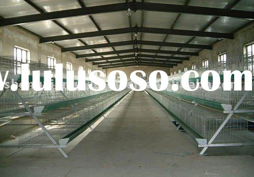 hot dipped galvanized 20years lifetime low carbon steel wire Automatic Chicken cage layer chicken ca