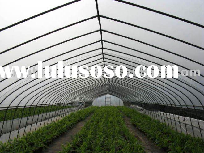 6m single span film tunnel greenhouse