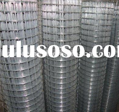 1 inch Welded Wire Mesh