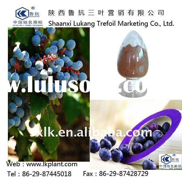 natural frozen iqf blueberries--China factory (GMP.HACCP)