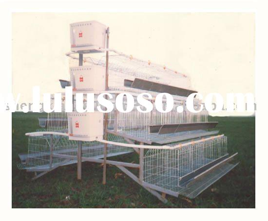 Low carbon steel wire layer poultry battery cages for sale for Cheap chicken pens for sale