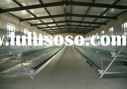 low carbon steel wire layer chicken cages for sale