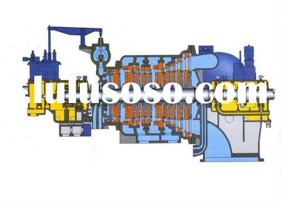 Double extraction condensing steam turbine
