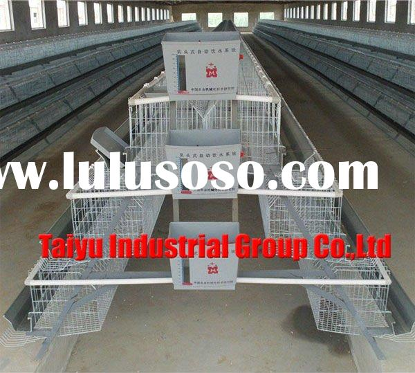Auto Poultry Feeder For Chicken Farm Equipment For Sale