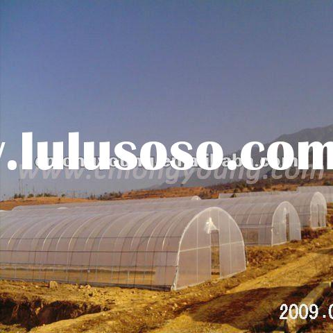 Tunnel Greenhouse Project for Tomato