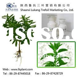 chinese natural stevia leaf extract powder--(GMP.HACCP)