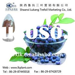 natural bulk blueberries--China factory (GMP.HACCP)