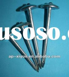 Galvanized umbrella head roofing nail