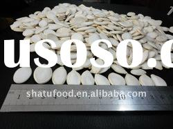 Chinese high quality snow white pumpkin seeds
