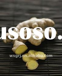 Ginger Extract Gingerols 4:1 5%