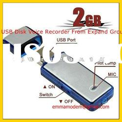 2GB USB Disk Voice Recorder, Audio Reocrder, Hidden Voice Recorder