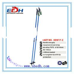 EDS17-2 Nordic walking stick in Sports & Entertainment