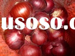 New Crop Chinese Red Fresh Onion
