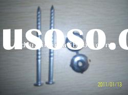 Sell Screw Nail with Rubber Washer