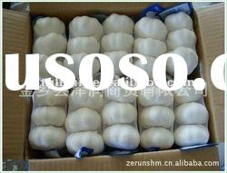 [hot product]2011 Chinese shandong good quality pure white garlic with different packing