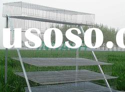 chicken egg layer cage/poultry cage/layer chicken battery cage/chicken coop