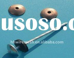 polished common round iron wire nail