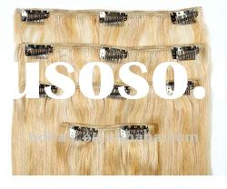 2012 hot selling top quality european human remy hair wholesale clip in hair extension