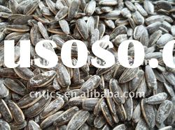 Chinese sunflower seeds (good quality and good price)