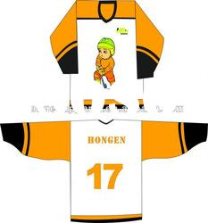 2012 custom-made full sublimation Ice Hockey jersey,hockey wear