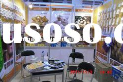 China Garlic Products for 2011 Canton Fair