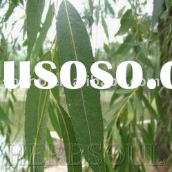 Herbsoul best selling with good quality white willow bark p.e. GMP supplier