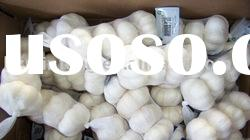 Chinese White Garlic with Different Packing Super quality Best price