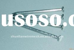 High quality polished Common Nail manufacturer supply