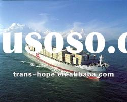 Sea Freight from China to Abu Dhabi