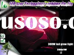 300W led grow light panel for USA Greenhouse tomato