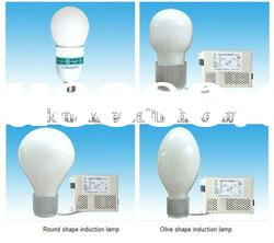 energy saving high frequency induction lamp