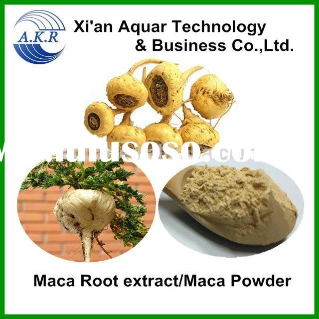 benefits of maca root extract natural maca extract powder and free sample